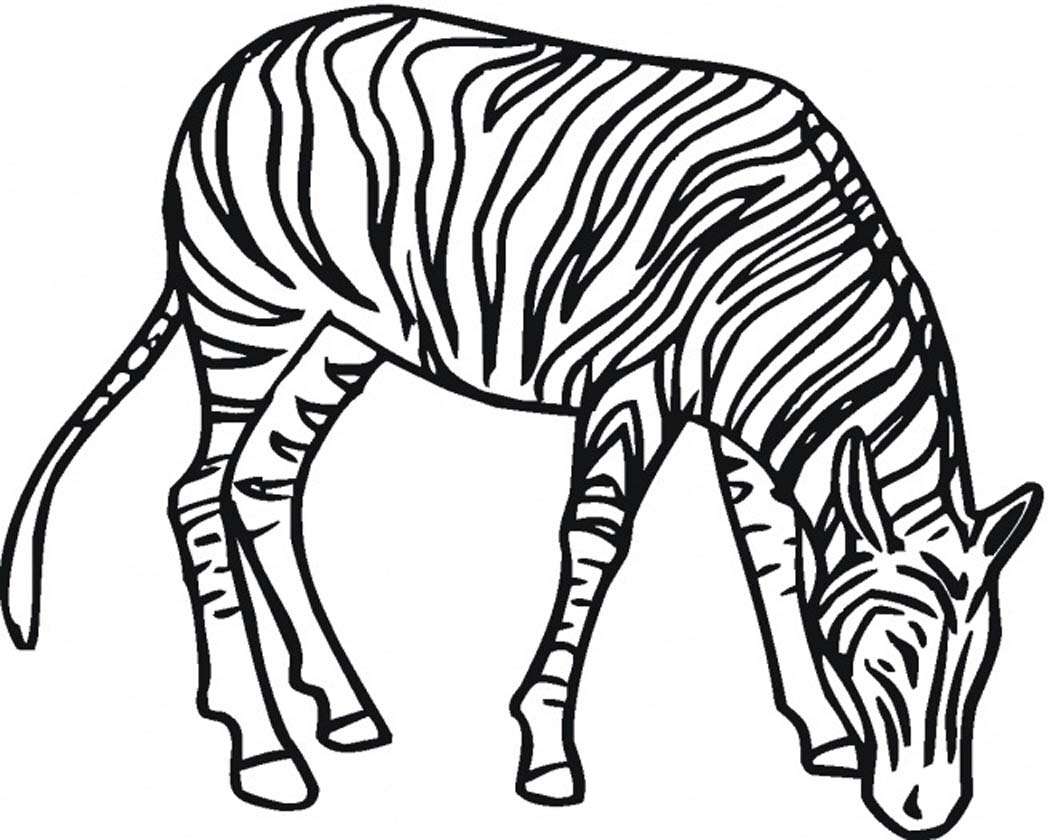 1050x840 Printable Zebra Coloring Pages Coloring Me