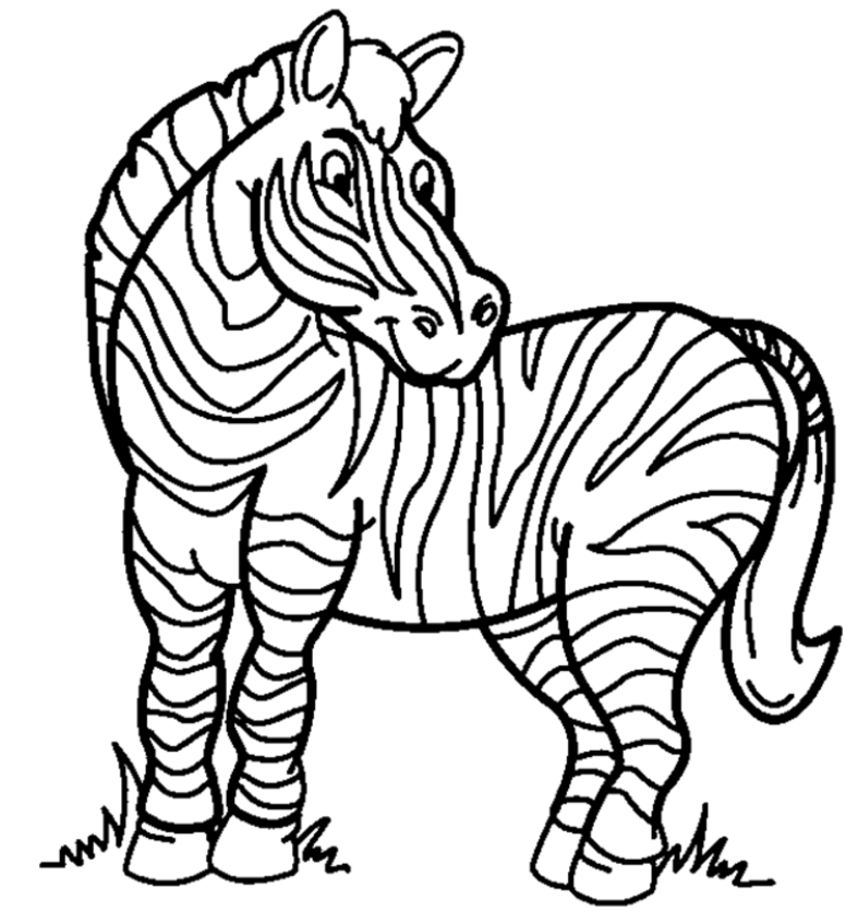 787x836 Zebra Coloring Page Amp Coloring Book
