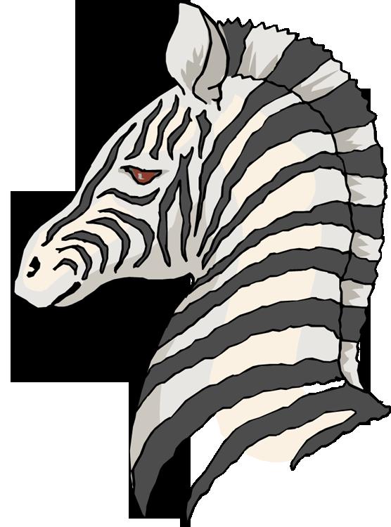 556x750 Free Zebra Clipart 4