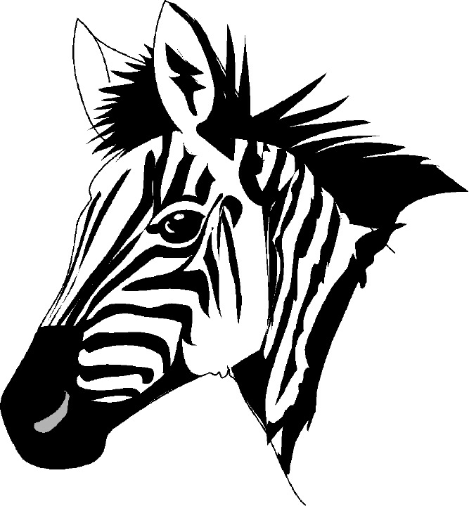 667x720 Zebra Head Clipart