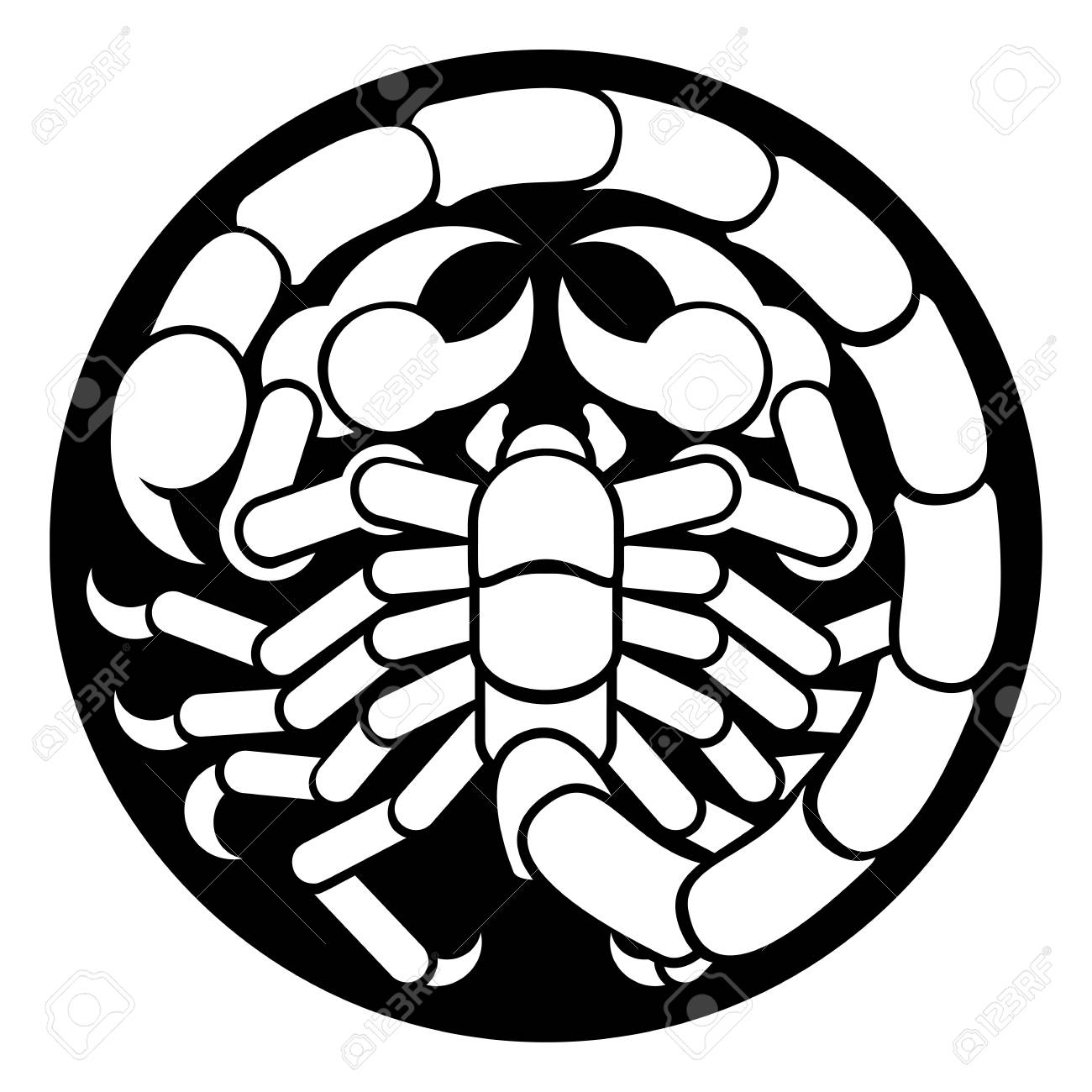 1300x1300 Zodiac Signs Circular Scorpio Scorpion Horoscope Astrology Symbol