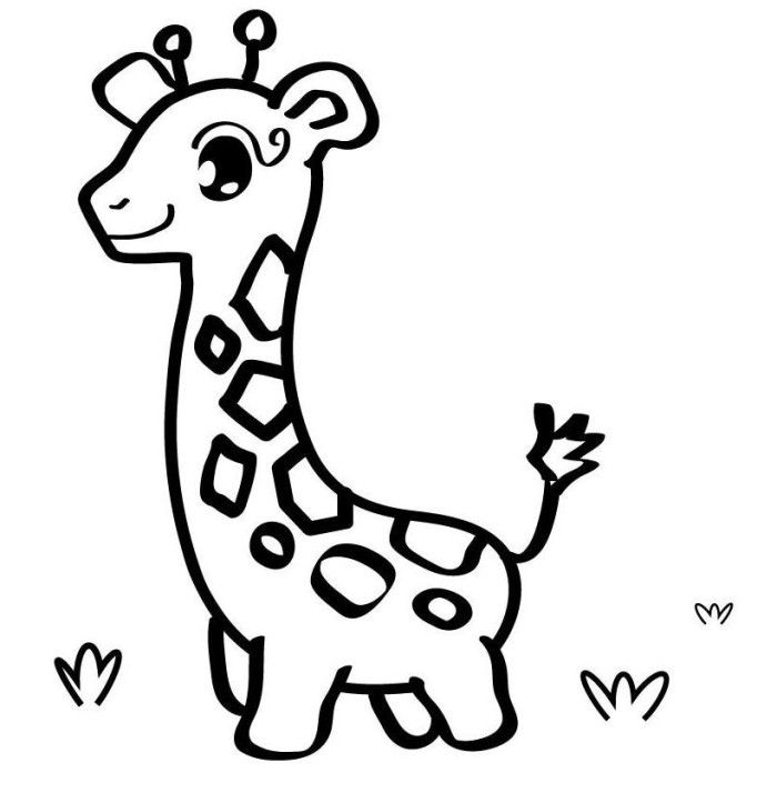 700x723 Zoo Entrance Coloring Page Image Clipart Images