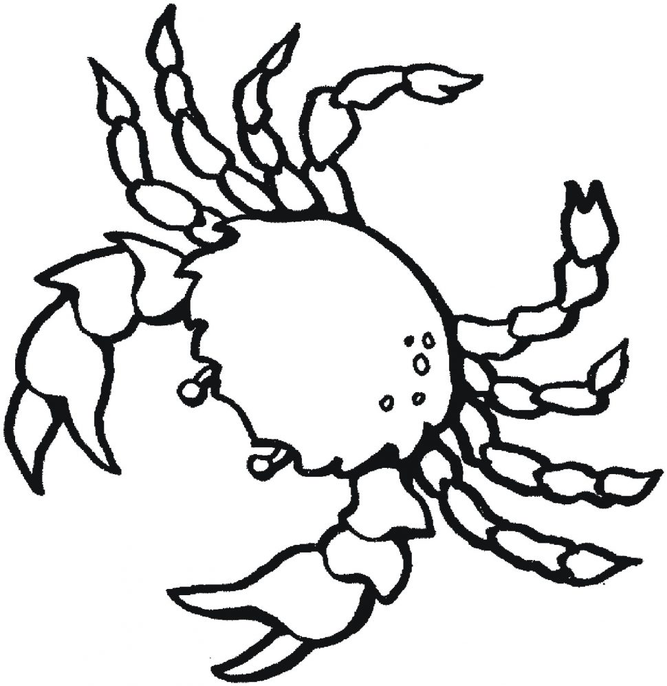 Zoo Coloring Pages | Free download best Zoo Coloring Pages on ...