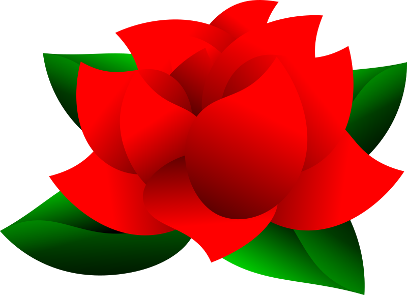 Red Rose Clipart PNG